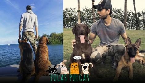 """Max y Jack, los perros y """"mejores amigos"""" de Enrique Iglesias"""